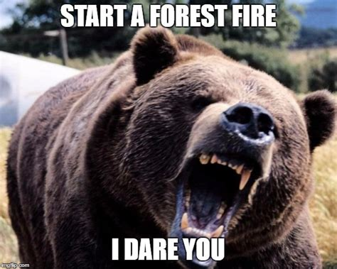 Smokey The Bear Meme Generator - smokey the bear imgflip