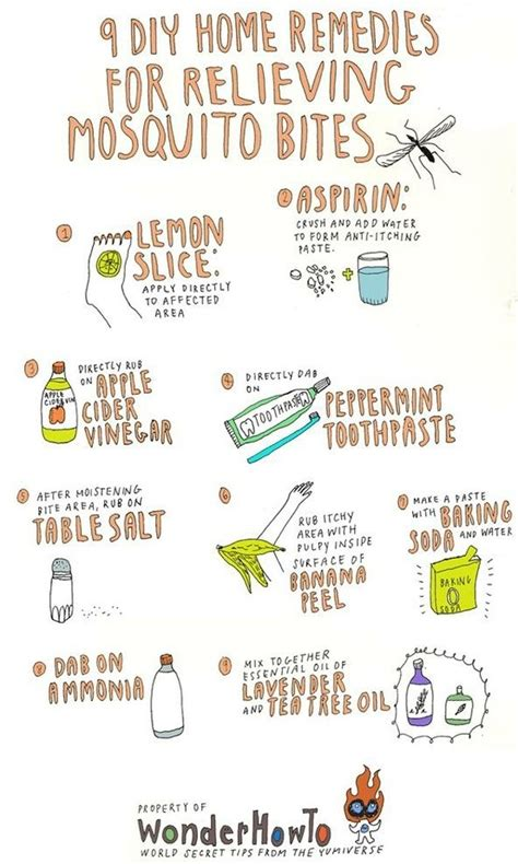mosquito bites home remedies for health