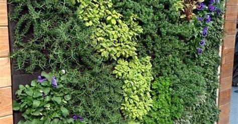edible living wall elements vertical garden