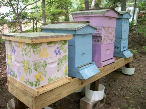 backyard beekeepers association 9 best painted bee hive ideas images on pinterest beehive bee boxes and bee keeping