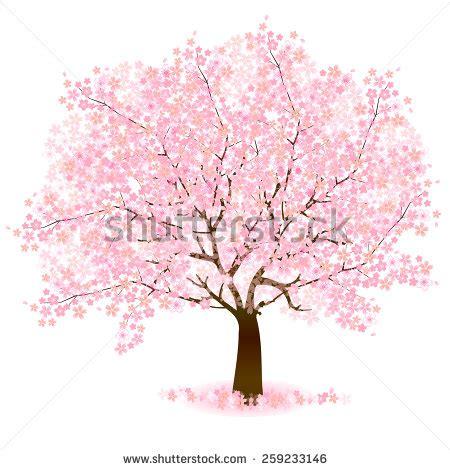 cherry tree vector cherry blossom trees wallpaper 1920x1080 wallpoper 450952