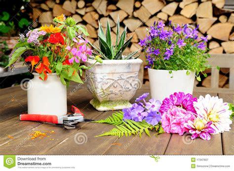 terrazzo in fiore decorazione fiore sul terrazzo immagine stock
