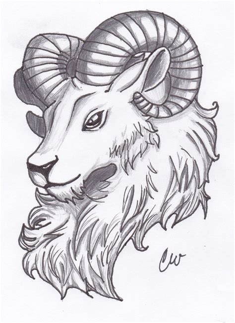 ram head tattoo designs aries ram drawings related keywords aries ram drawings