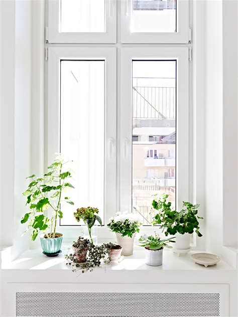 Window Sill Inspiration Window Sill Decoration Ideas Creative Designs At Home