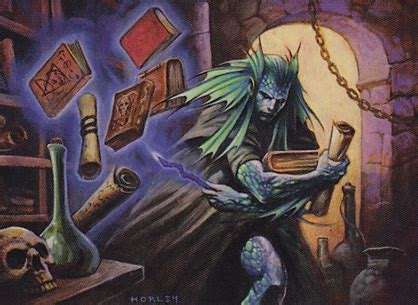 The Scroll Thief scroll thief taken from a magic the gathering card