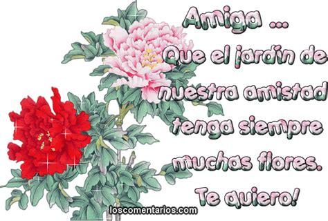 imagenes de amor y amistad flores flores de amistad imagui