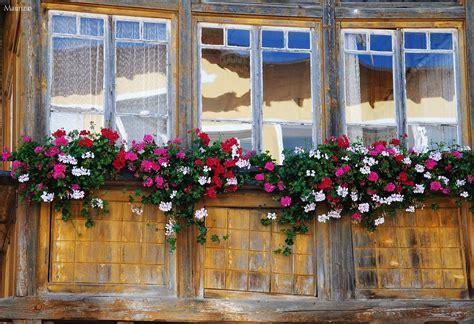 balconi fioriti immagini balconi fioriti juzaphoto