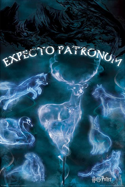 harry potter patronus poster sold at europosters