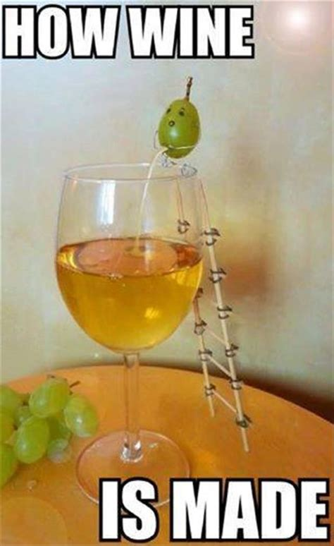 grape peeing  wine glass funny memes funnymemes
