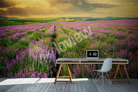 fototapete lavendel artikel entspannungszone mit lavendel flair fototapete
