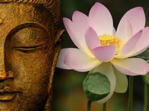 Lotus La Voie 201 Veill 233 E Du Coeur La Fleur De Lotus Symbolique Et