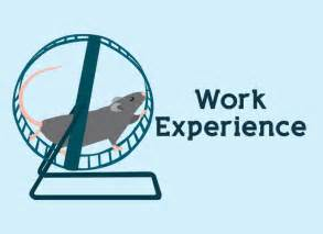 Nus Mba 2 Years Work Experience by 9 Best Work Experience Images On Curriculum