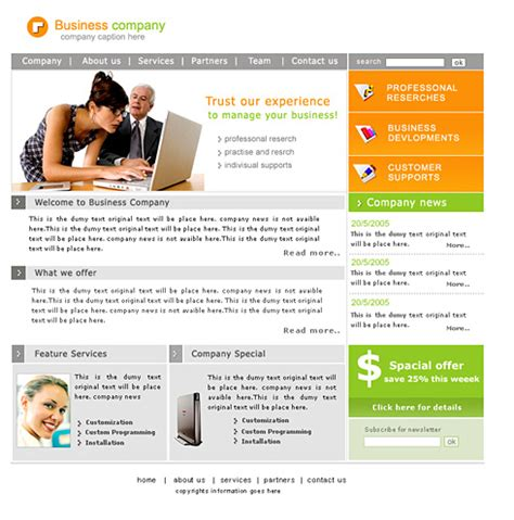 Buy A Professional Website Template Professional Website Template 0397 Computers