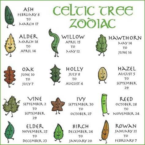 What Calendar Is The Zodiac Based On The Witch S Sanctuary The Celtic Tree Zodiac Is Based On