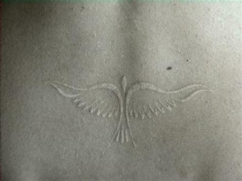 white dove tattoo white ink tattoos designs ideas and meaning tattoos for you