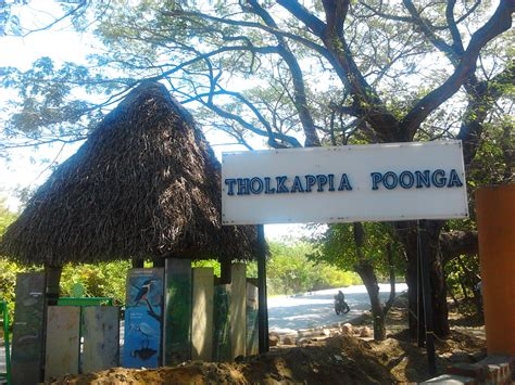 chennai boat club land cost tholkappia poonga