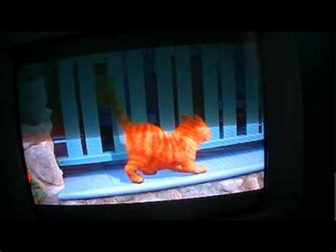 film kalung jelangkung part 1 garfield the movie part 1 youtube