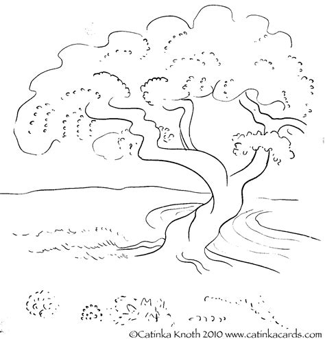 Tree Coloring Pages Beautiful Blossom Trees Coloring Beautiful Trees Coloring Page