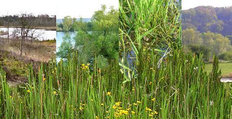 Landscape Ecological Structures Ecosystemen