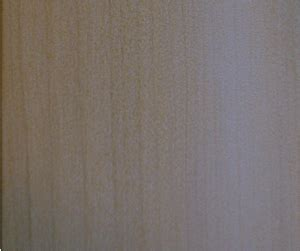 blackgum woodworking network