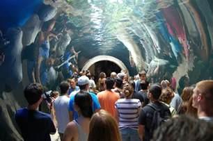 Dallas Children Dallas World Aquarium Aquarium In Dallas Thousand Wonders