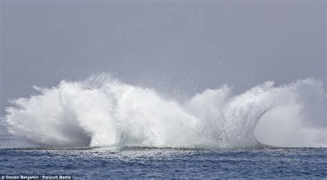 what is the biggest boat in the whole wide world moment humpback whale thought it was a flying fish