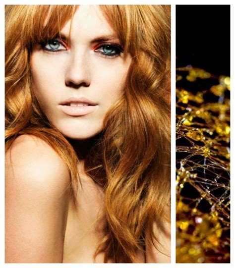 American Cut 2 8g 17 best images about haircolors formulas that i