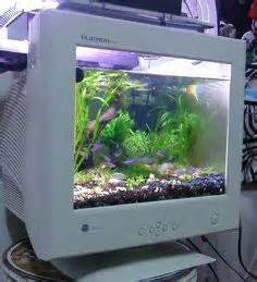 Crazy Fish Tanks But Very Cool!!!! on Pinterest   Fish Tanks, Aquarium