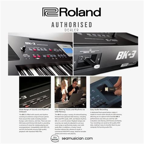 roland bk  black backing portable keyboard  seamusician