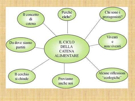 disegno catena alimentare il ciclo della catena alimentare