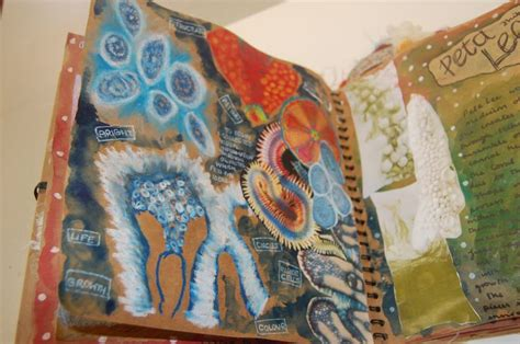 sketchbook ks2 24 best images about textiles on conch shells