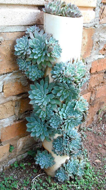 Succulents Planter Idea This Is A Great Idea For Succulent Planter Ideas