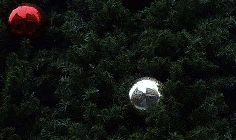 closest christmas tree drop area cities offering tree drop locations