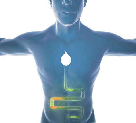 hydration joint health how it works hydration health
