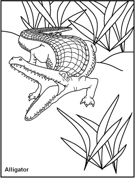 coloring pages of dangerous animals free printable dangerous animal coloring pages great for