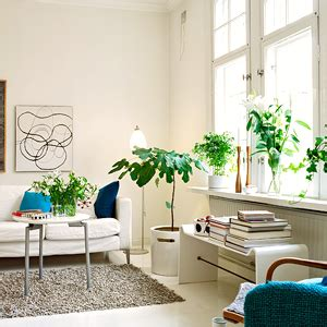 best living room plants de clutter your life and start a new chapter coolthingsilove