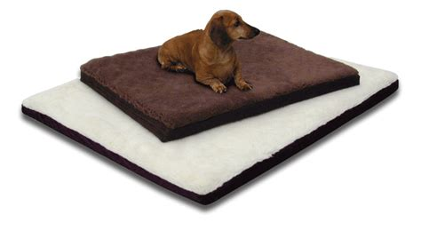 bed for arthritis beds for dogs with arthritis dogue