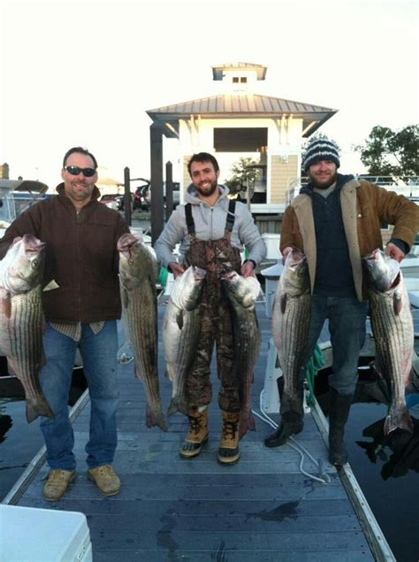 striper boat club 10 best fishing in virginia beach tidewater images on