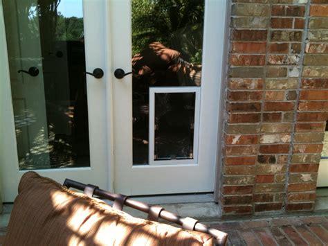 Pet Door In Glass Door San Antonio Doors In Glass Installation Gallery