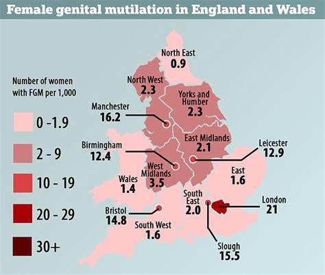 infibulation mutilation in islamic northeastern africa books doctors demand compulsory lessons on fgm desert
