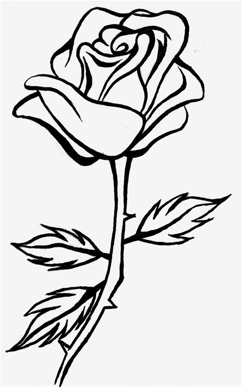 small rose coloring page line art drawings google search adult coloring pages