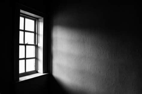 window light contrast light from a window free stock photo domain pictures