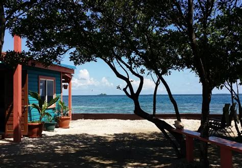 bird island belize airbnb you can rent a private island on airbnb for less than a