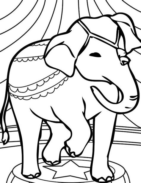 coloring page elephant face elephant coloring pages bestofcoloring com