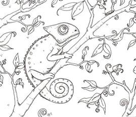 chameleon coloring page hedgie s desk chameleon coloring page
