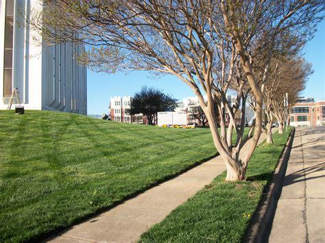 landscaping denver nc landscaping denver nc green lawn care tr 228 dg 229 rdsanl 228 ggning denver nc usa