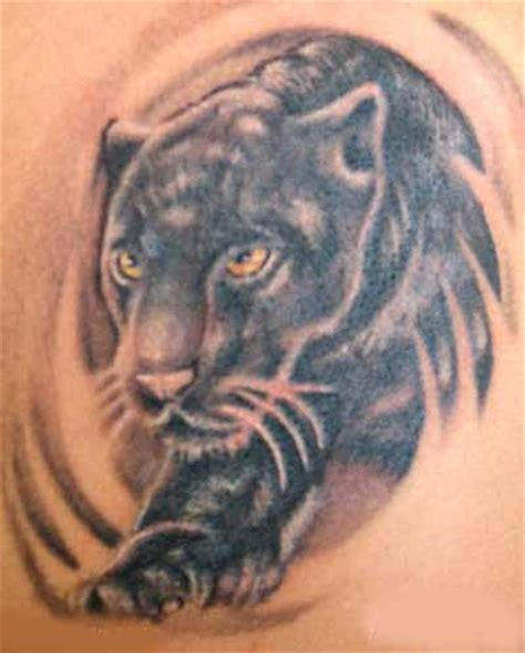 panther tattoos designs high quality photos and flash