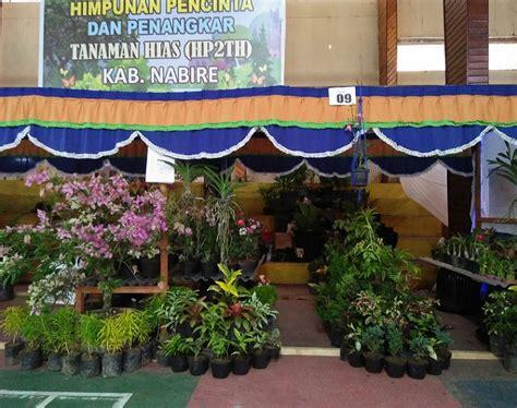 Produk Ukm Bumn Mahar Hias hp2th nabire pamerkan beragam tanaman hias di pameran