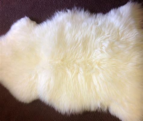 Ivory Sheepskin Rug by Sheepskin Rug Premium Auskin Ivory Ultimate Sheepskin