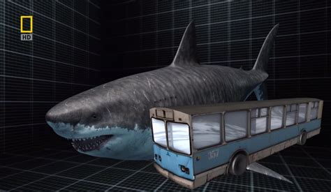 Megalodon Overestimated | 3 acts megalodon embrace the drawing board